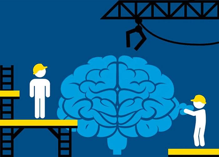 structural neuroplasticity